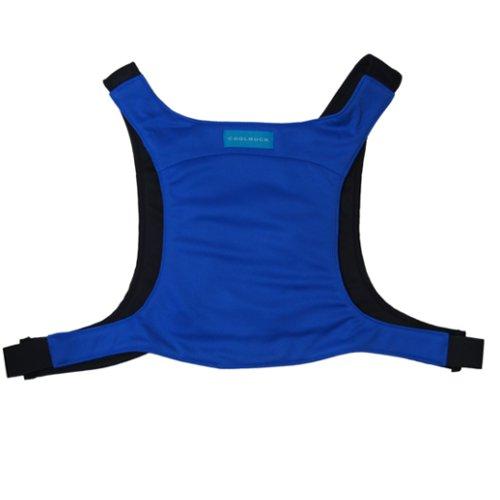 山本縫製 クールリュック L-BIGサイズ ブルー(115cm~)