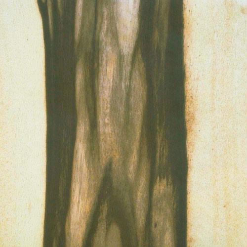 谷口 黒柿 ミシンで縫える木のシート 30×30cm