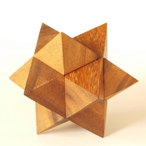 tree made 木製立体パズル「ルーベンス」