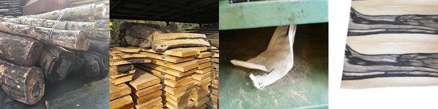 木は育つのに長い年月を経て、製品になってまた長い年月を生きていく