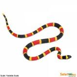 サファリ コーラルスネーク(サンゴヘビ)ベビー 263329