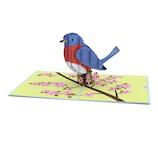 ラブポップ(Lovepop) Bluebird 青い鳥│カード・ポストカード グリーティングカード