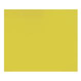 カナセライト アクリルキャスト板 270×320×2mm レモンクリア│樹脂・プラスチック アクリル板