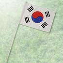 田中旗店 ミニチュア国旗M104 韓国