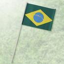 田中旗店 ミニチュア国旗M104 ブラジル