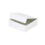 東急ハンズオリジナル フラットボックス2  ホワイト 内寸95×90×H28mm
