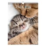 【2020年版・壁掛】ドレジャー ポスターカレンダー 猫