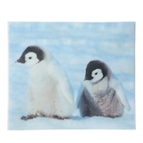 包む アニマルジップBAG WL T-2834 ペンギン 5枚入