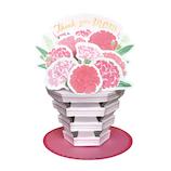 グリーティングライフ 母の日フラワーポットカード TK−21 ピンク