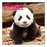 【2019年版・壁掛】グリーティングライフ パンダ カレンダー C1039PA LPサイズ 日曜始まり