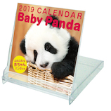 【2019年版・卓上】グリーティングライフ ベビーパンダ カレンダー C1076PA FDサイズ 日曜始まり