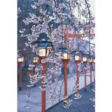 ピンナップ ポストカード 京都 平野神社 桜と灯籠 KM17