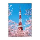 ピンナップ 東京タワー 桜 TY50│カード・ポストカード グリーティングカード