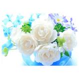 ピンナップ ポストカード 白いバラ 水色の花瓶 FW206│カード・ポストカード ポストカード(写真)