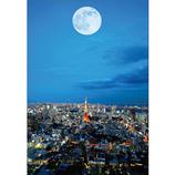ピンナップ ポストカード 東京タワー 満月 TY61