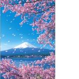 ピンナップ FJ205 富士山 桜散る 縦