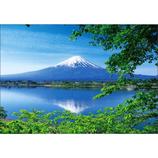 ピンナップ ポストカード FJ207 富士山 河口湖 緑