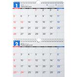 【2020年版・壁掛】高橋書店 E91 エコカレンダー壁掛 B5×2面