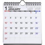 【2021年版・壁掛卓上兼用】 高橋書店 No.E103 エコカレンダー壁掛卓上兼用 A5変型