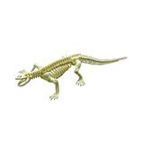 <東急ハンズ> 関節が動く!遊べるアクションフィギュアです。 ポーズスケルトン 爬虫類両生類 コモドドラゴン画像