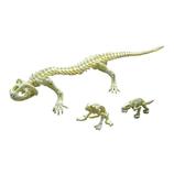 <東急ハンズ> 関節が動く!遊べるアクションフィギュアです。 ポーズスケルトン 爬虫類両生類 オオサンショウウオ画像
