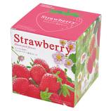 聖新陶芸 ピンクの花が咲くストロベリー栽培キット GD796