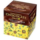 聖新陶芸 チョコレートデイジー栽培セット GD-845