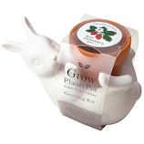 聖新陶芸 ポットフレンズ GD-86001 ウサギ ワイルドストロベリー