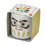 聖新陶芸 お芽でたおちょこ 達磨白五色とうがらし   GD915−2│園芸用品 ミニ盆栽・栽培キット