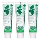 【お買い得】 デンティス 歯磨き粉 3本セット│オーラルケア・デンタルケア 歯磨き粉