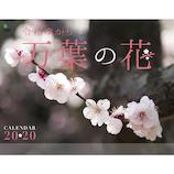 【2020年版・壁掛け】 万葉の花 9105645