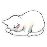 アーティミス(ARTEMIS) ごめん寝マウスパッド 白猫