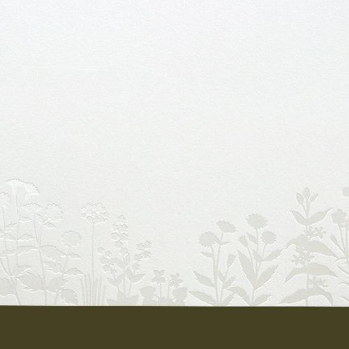 4541232007383-3