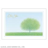 サンリオ 白枠大きな1本の木 428388│カード・ポストカード グリーティングカード