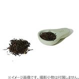 ソイル(soil) チャサジ グリーン