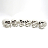 UNITON 頭蓋骨6個入り
