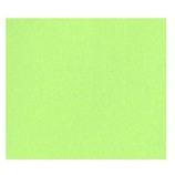 インディゴ PW497 ペイントペーパー ライトグリーン