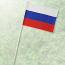 ミニチュア国旗NO197 ロシア