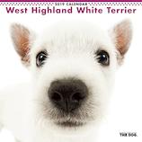 【2019年版・壁掛】 THE DOG ウエストハイランドホワイトテリア 403236