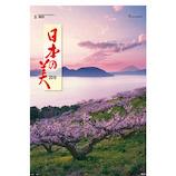 【2019年版・壁掛】全協2019 トーハン・ハイDX 日本の美 フイルム TD-565