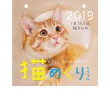 【2019年版・リフィル】 猫めくり 2019年 リフィル CK-C19-02