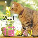 【2021年版・日めくり】 シーオーツ ONDORI 猫めくり CK-C21-01