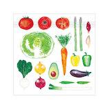 オリエンタルベリー vegenery ジッパーバッグ カラフルマルシェ 5枚入│ラッピング用品 ラッピング袋