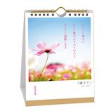 【日めくり】 いろは出版 きむ 言葉の花束カレンダー KHCF−01