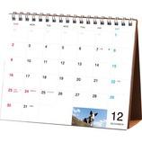【2018年版・卓上】 ほぼ日ホワイトボードカレンダー2018 気まぐれカレンだー