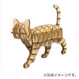 エーゾーン ki-gi-mi 歩きネコ