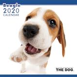 【2020年版・壁掛け】THE DOG ビーグル 403302