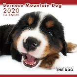 【2020年版・壁掛け】THE DOG バーニーズ 403303