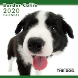 【2020年版・壁掛け】THE DOG ボーダーコリー 403305