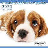 【2020年版・壁掛け】THE DOG キャバリア 403309